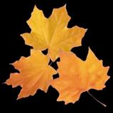 Autumn rocket boost icon