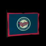 Minnesota Twins antenna icon
