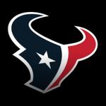 Houston Texans decal icon