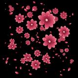 Cherry Blossom rocket boost icon