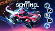 Sentinel Starter Pack