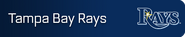 Tampa Bay Rays player banner icon
