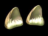 Wildcat Ears