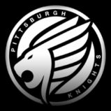 Pittsburgh Knights decal icon