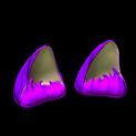 Wildcat ears topper icon purple