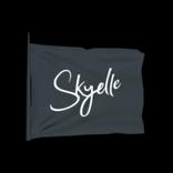 Skyelle antenna icon