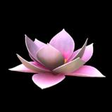 Flower - Lotus topper icon