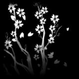 Serene Sakura decal icon