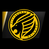 Pittsburgh Knights player banner icon