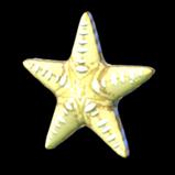 Seastar antenna icon