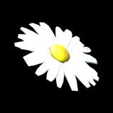 Flower - Daisy antenna icon