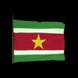 Suriname antenna icon