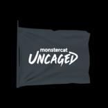 Uncaged antenna icon