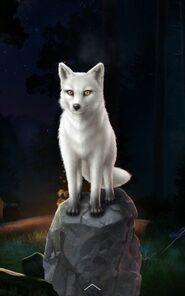 Beast Fox