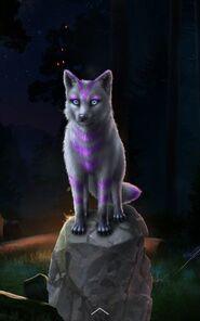Beast Strange Fox
