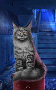 Beast Normal Cat