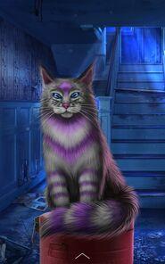 Beast Strange Cat