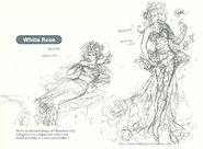 SF Princess White Rose Artwork