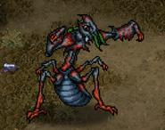 RS2 Kaiser Ant