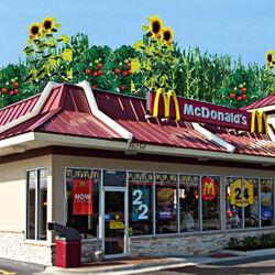 10-demian-mcdonalds-roof-1-85.jpg