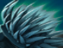 Ice Quill Carapace.png