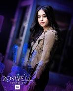 Liz season 2 poster