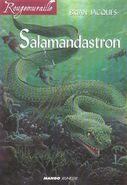 Salamandastron (livre)