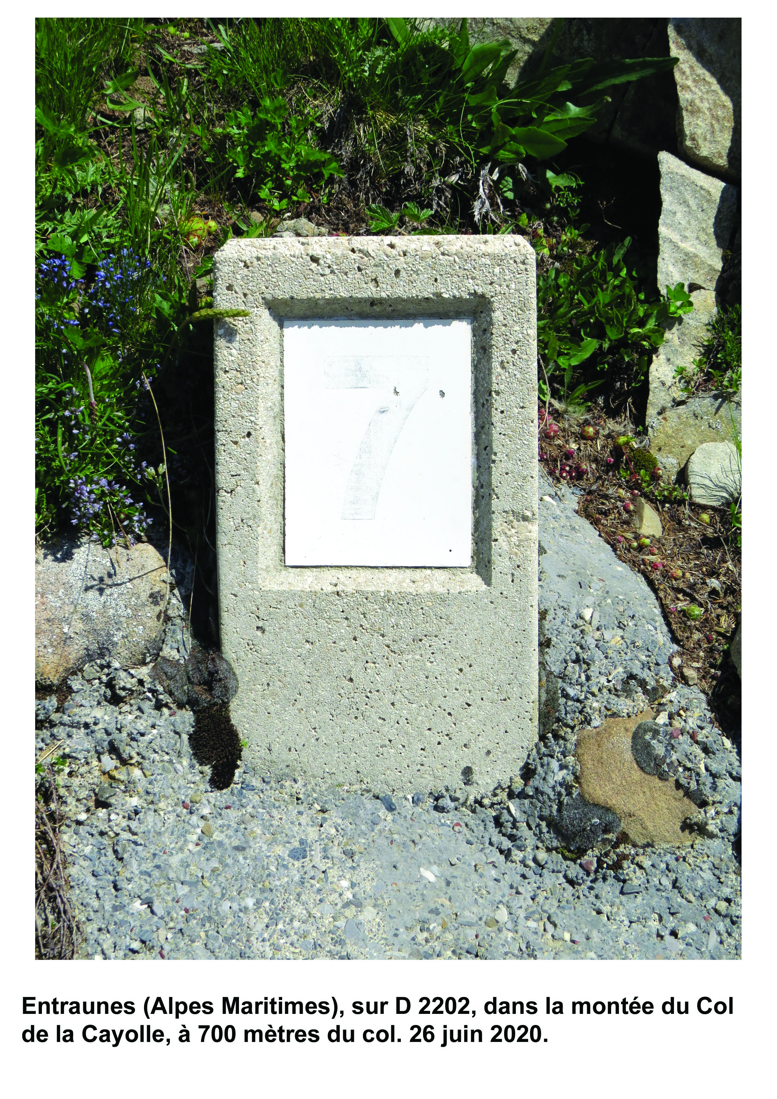 Carte de localisation des Panneaux Michelin des Alpes-Maritimes (06)