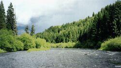 Fluviul Verde.jpg