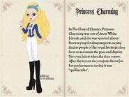 Princess Charming (Sea Captain) Book