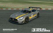 DpWang74 MERCEDES-AMG GT3
