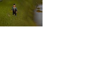 Rs3.png