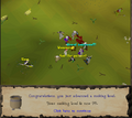 99cooking