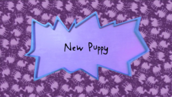 New Puppy title card.png