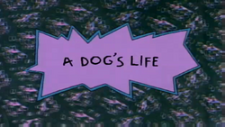 A Dog's Life title card.png