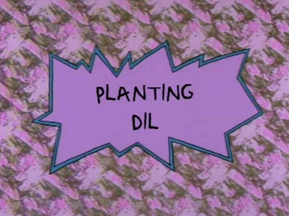 Planting Dil