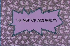 The Age of Aquarium