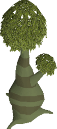 Hollow tree.png