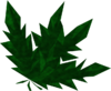 Clean toadflax detail.png