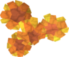 Marigolds detail.png