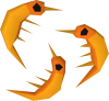 100px-Shrimp detail.png