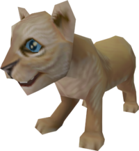Lion cub pet.png