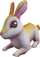 Bunny (Player-owned farm)
