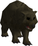 Grizzly bear cub.png