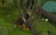 Evil Tree.