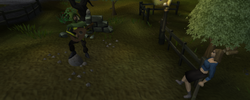 Draynor musican.png
