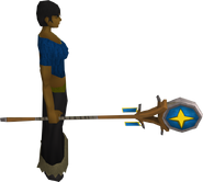 Banner of Saradomin equipped