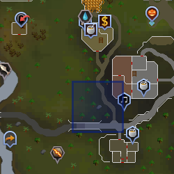 Circus (Cooks' Guild) location.png