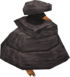 Penguin in rock.png