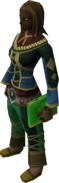 Mages' book (green) equipped